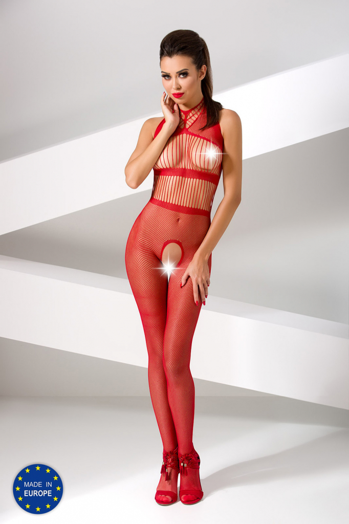 Passion Bodystocking BS048
